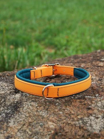 Hundehalsband Gr. 31-39